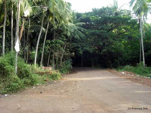 Road To Aguada, Goa, November 2010