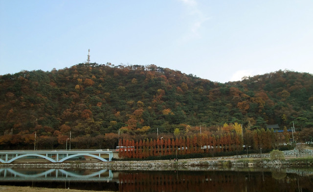 Fall in Ulsan