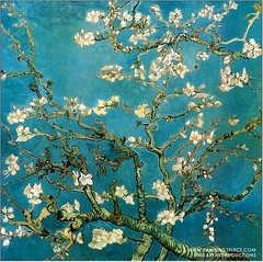 Almond Branches in Bloom(Van Gogh)