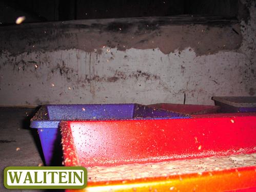 walitein-food-for-swiflets-02
