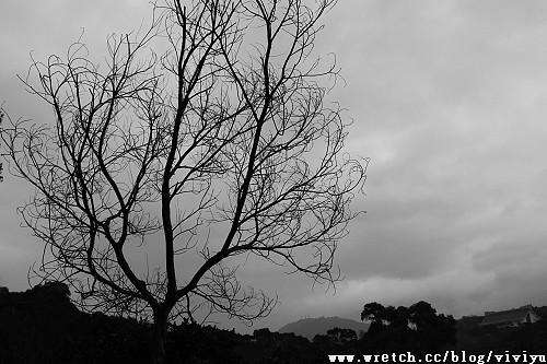 [旅遊.台東]池上.玉蟾園~環境.手作護唇膏篇 @VIVIYU小世界