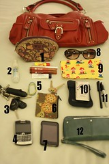 Day 8:  What's in your bag?