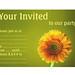 Party Invitation Design - Yellow Daisy Gerbra Flower
