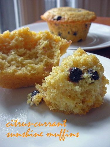 citrus-currant sunshine muffins