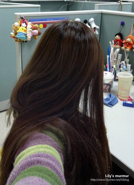 這是從背面拍的,頭頂還蠻亮的,髮質看起來還OK,的確有巧克力棕的顏色感。