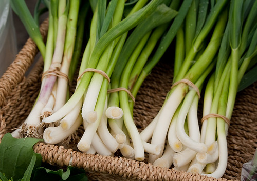 Kitsilano Farmers Market: spring onions