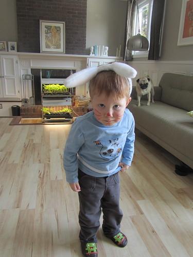 Bugs Bunny Bobby