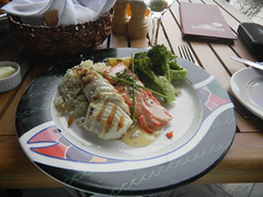 Halibut and Salmon