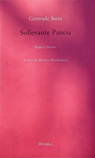 Gertrude Stein, Sollevante pancia, liberilibri 2011, [responsabilità grafiche non indicate]; copertina (part.), 1