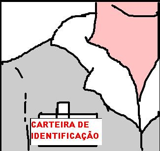 CarteiraIdentificacao