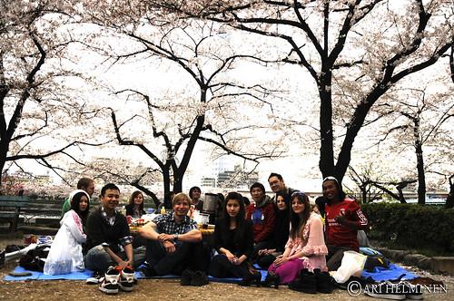 Sakura house Hanami 東京 日本。Tokyo Japan Sakura