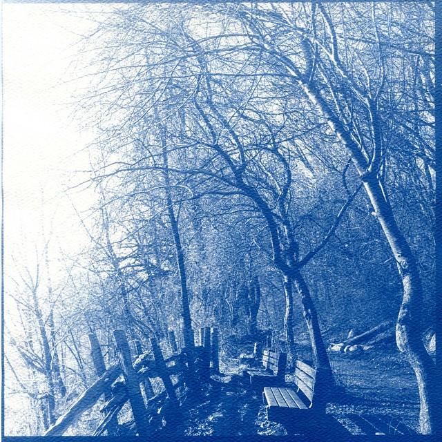 Path at Riverdale Farm, Toronto