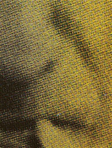 Roland Barthes, La preparazione del romanzo; corsi (I e II) e seminari al Collège de France, Mimesis 2010: 2 voll.; Cover design Mimesis Communication; cop. (part.), 8