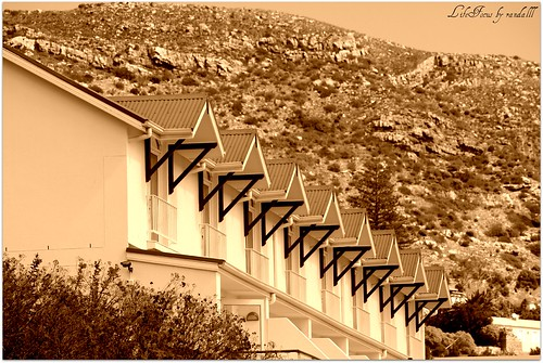 architectural symmetry in sepia