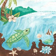Baby Sea Turtle - Something to Cherish