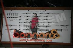 Eminem at Bonnaroo 2011