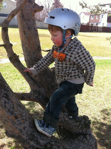 Climbing a tree after a bike ride