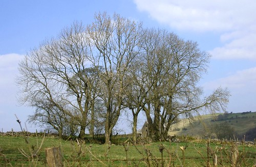 Near Grindon, Derbyshire