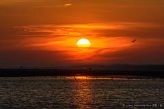 Sunrise at Ballum Beach (Ameland)
