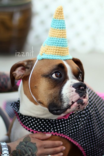 Maggie's Party hat