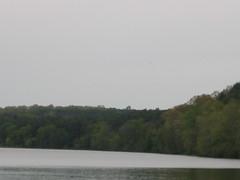 Octoraro Reservoir