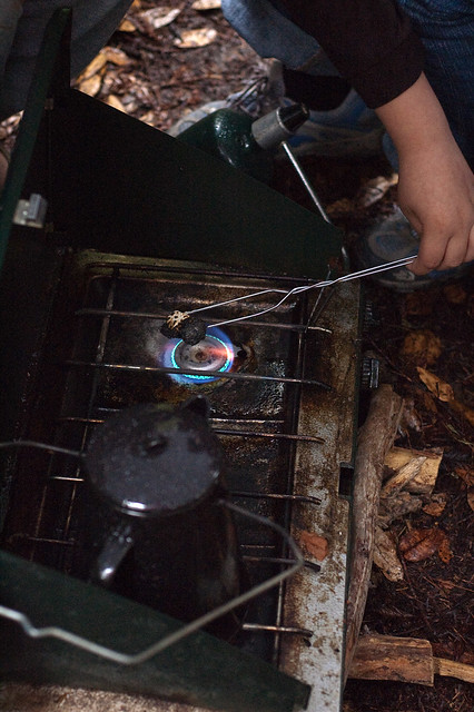 Big Basin Roasting Marshmallows on Grill