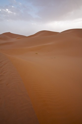 sahara-sand-dunes