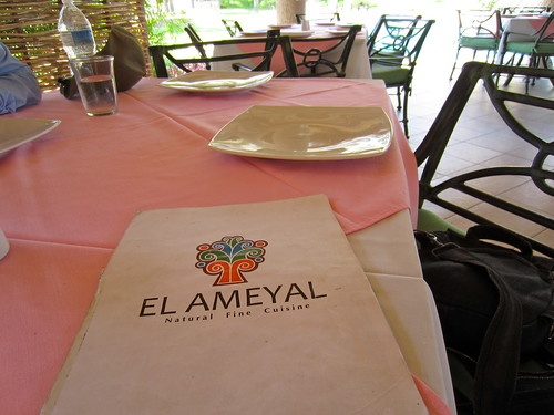 Vegetarian restaurant in Cabo San Lucas