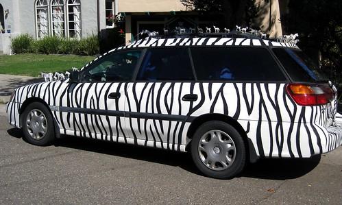 Zebras Speak Louder Than Words by dyannaanfang