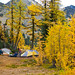 Fall camping near Hart's Pass
