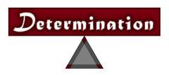 week 15 - Determination