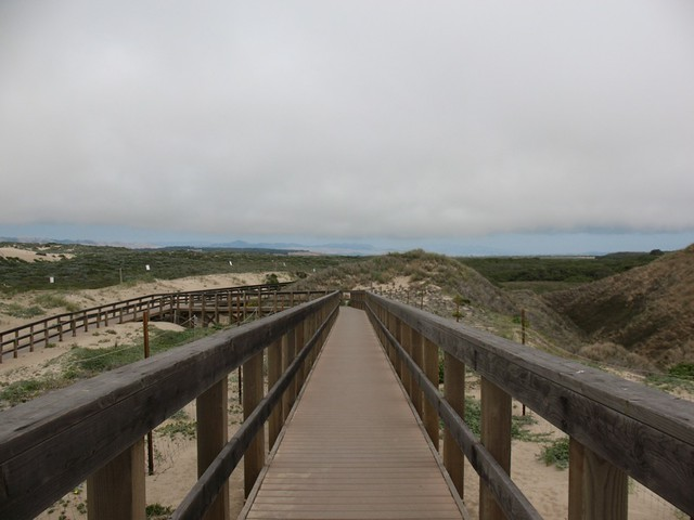 Guadalupe Dunes