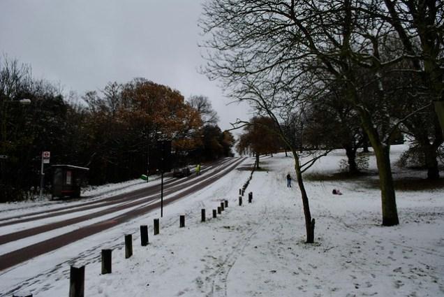 Maryon Wilson Park