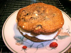 homemade ice cream cookie sandwich