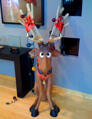 338/365 reindeer