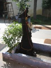 Eagle vahana for Saneeswarar