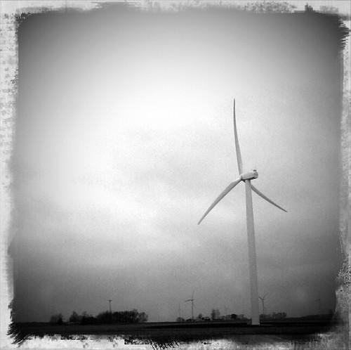 windmill.12.31.10