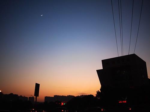 荷花园的夕阳