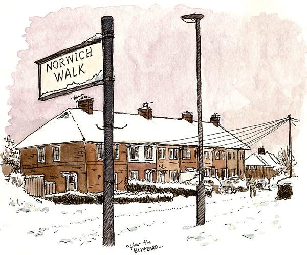 snowy norwich walk