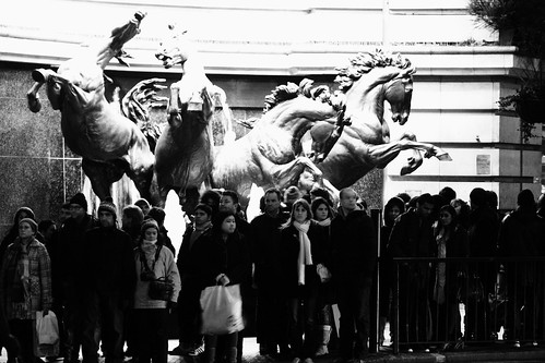 Piccadilly Horses