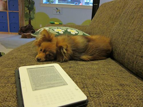 Literacy Dog
