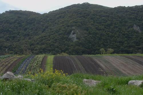 Arroyo Grande Hill 01