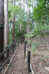鴨居原市民の森(奥の細道、Kamoihara Community Woods)