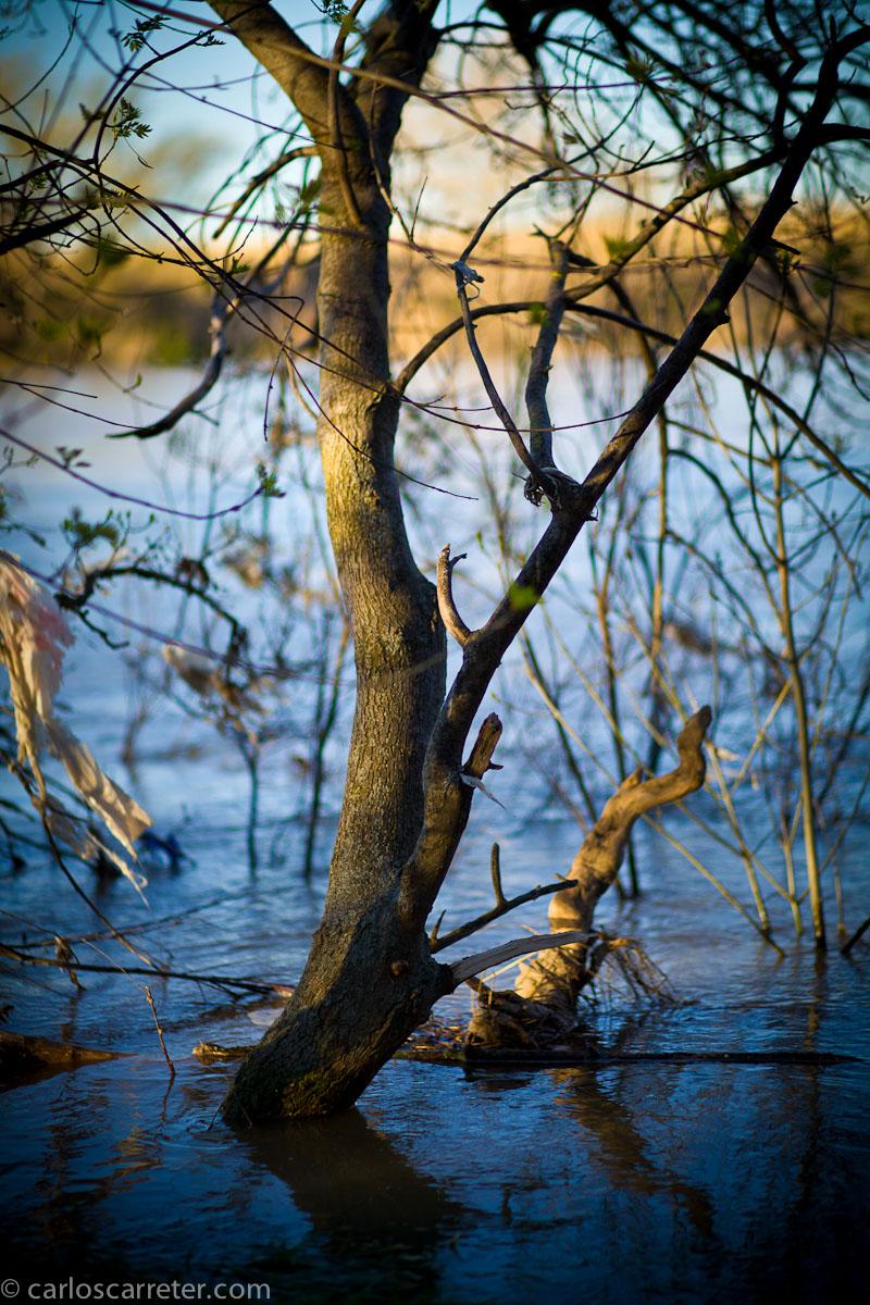 Crecida del Ebro