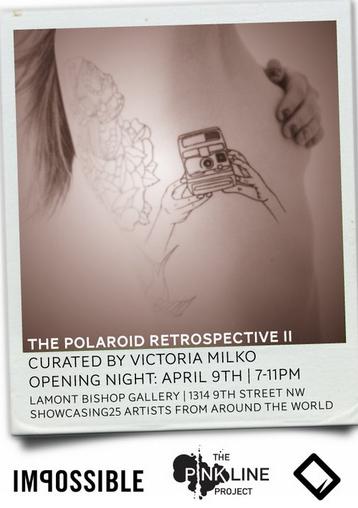 Polaroid Retrospective II