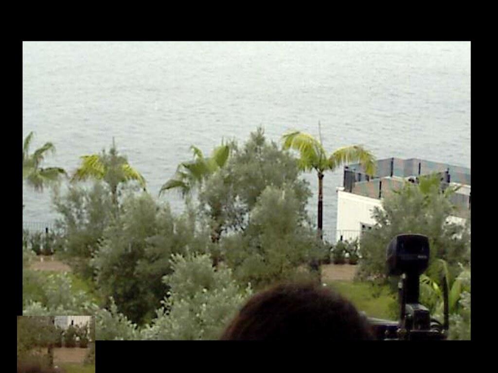 hugatree_screen_20110125_170024_cameraOutside