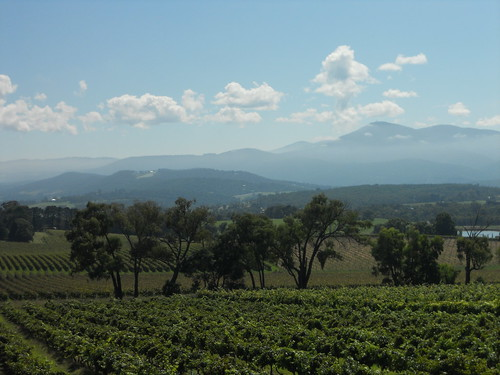 View from Yarra Yering