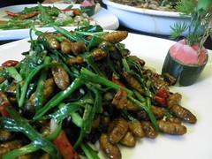 silk worms (柞蚕, zuò cán )