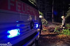 Waldbrand Idsteiner Straße 25.04.11