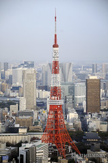 Tokyo tower, 東京 日本